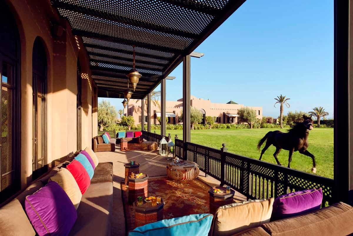Selman_Hotel_Horses